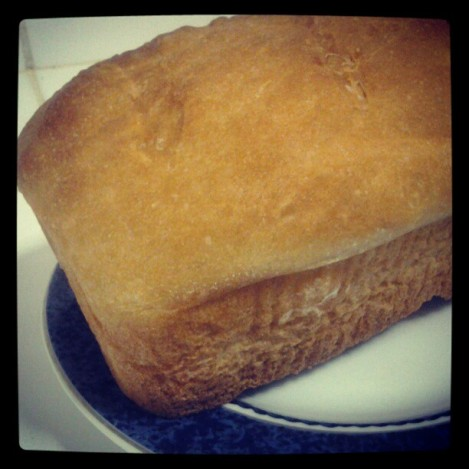 My first loaf of White Bread. Was really good with some tuna salad.